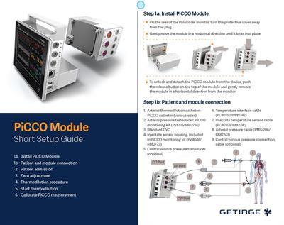 PiCCO Module - Short Setup Guide